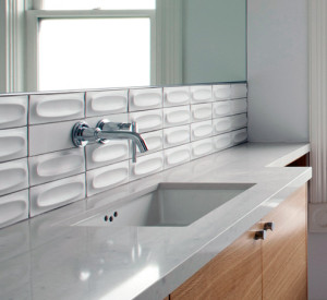 Choosing our Bath Tile - Silver Fern Ventures Inc